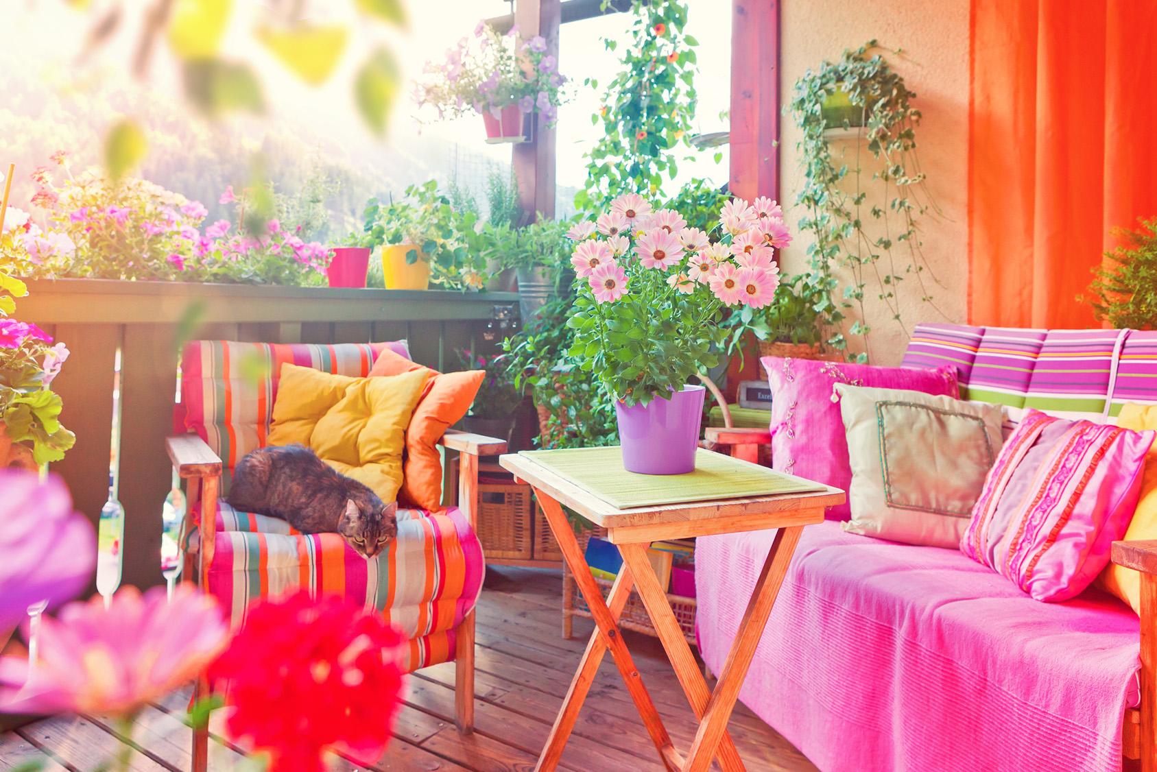 Haus & Garten - Prisma